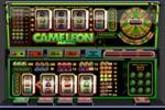 cameleon_152x100